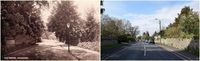 Chudleigh Then & Now (#61)